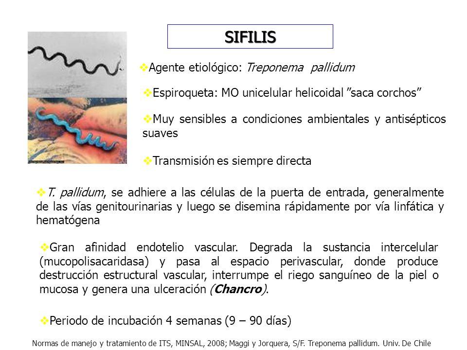 SIFILIS Agente etiológico: Treponema pallidum