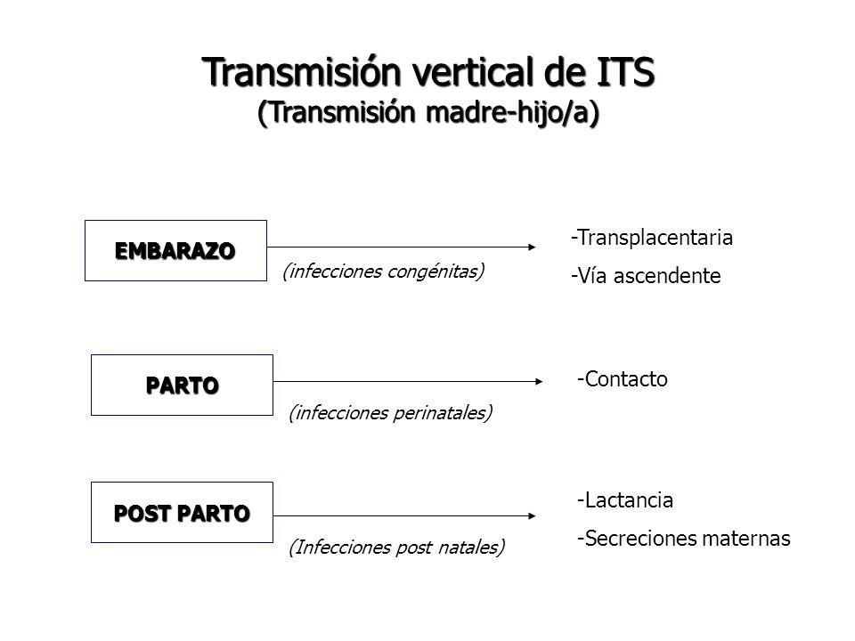 Transmisión vertical de ITS (Transmisión madre-hijo/a)