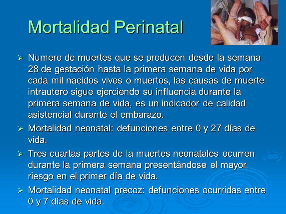 Mortalidad Perinatal