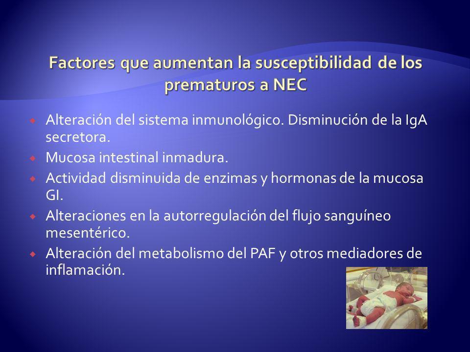 Factores que aumentan la susceptibilidad de los prematuros a NEC