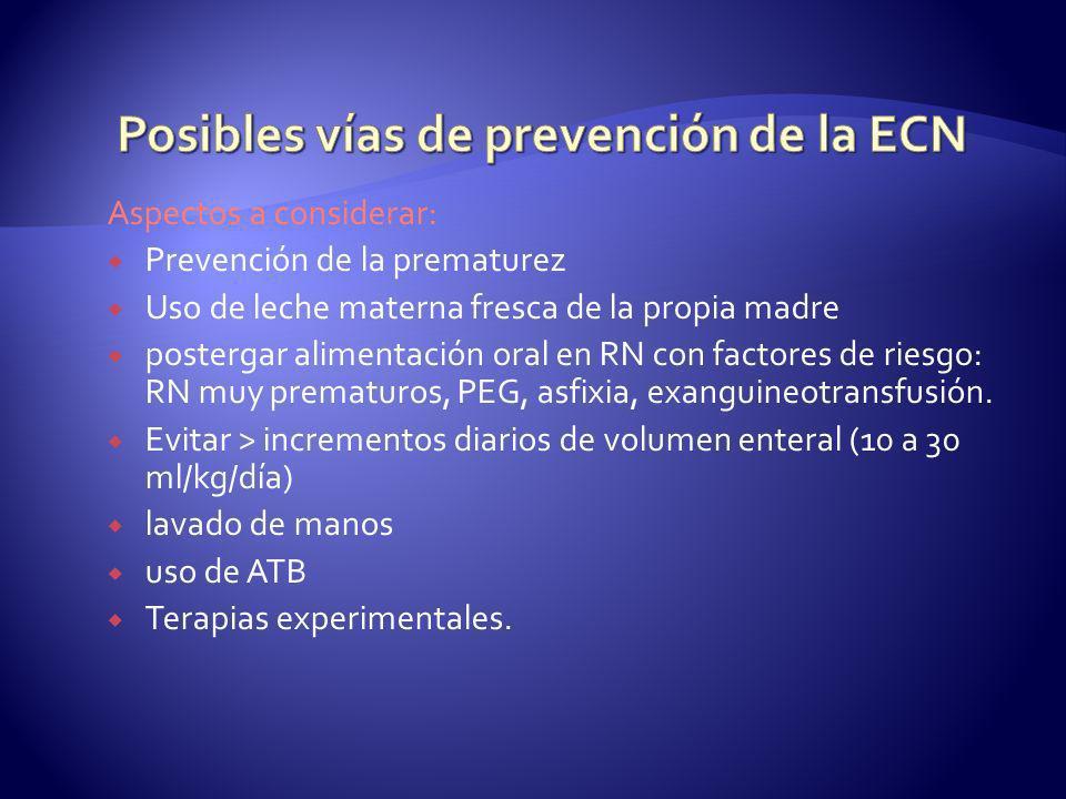 Posibles vías de prevención de la ECN