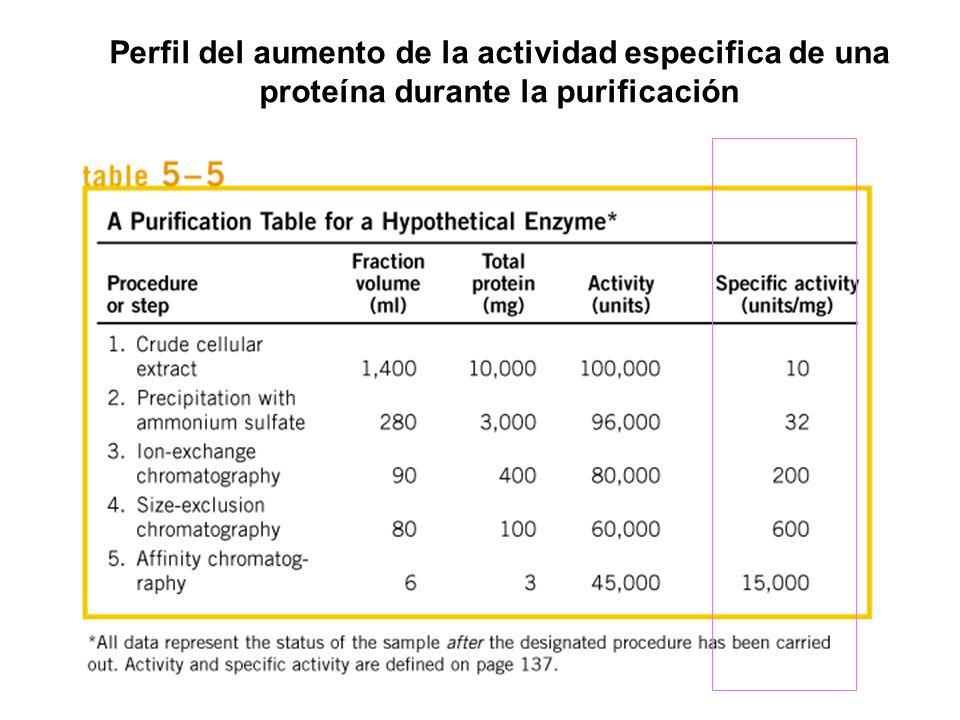 Perfil del aumento de la actividad especifica de una proteína durante la purificación