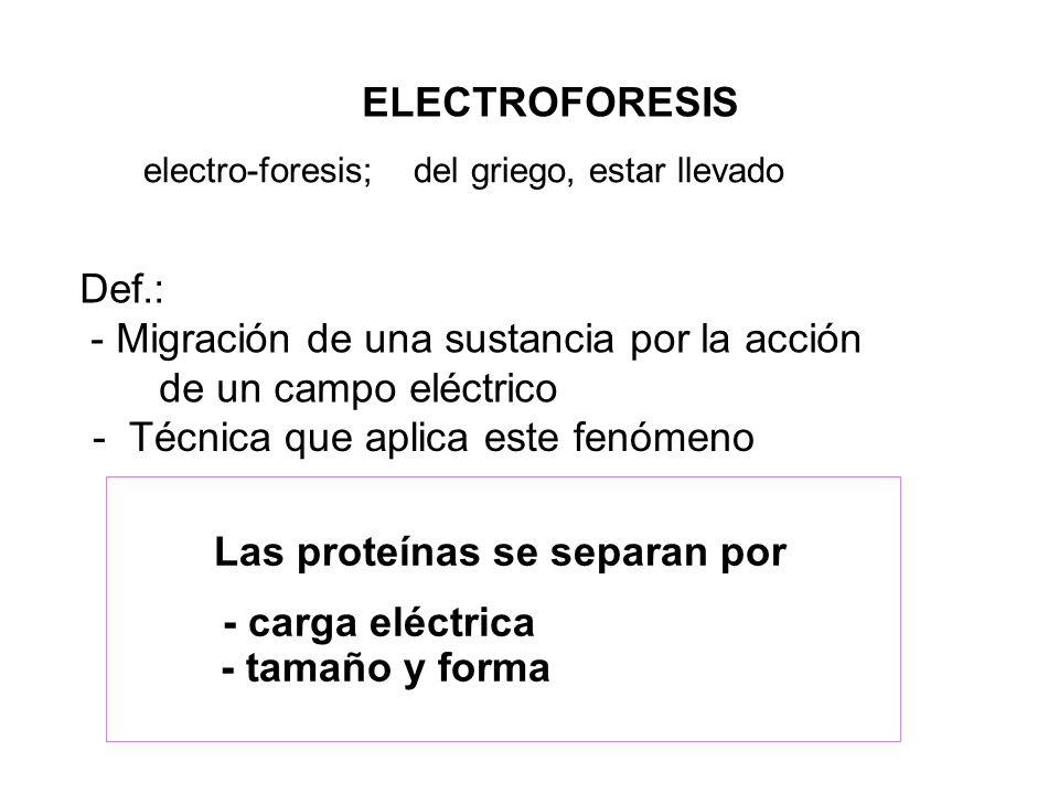 - Migración de una sustancia por la acción de un campo eléctrico