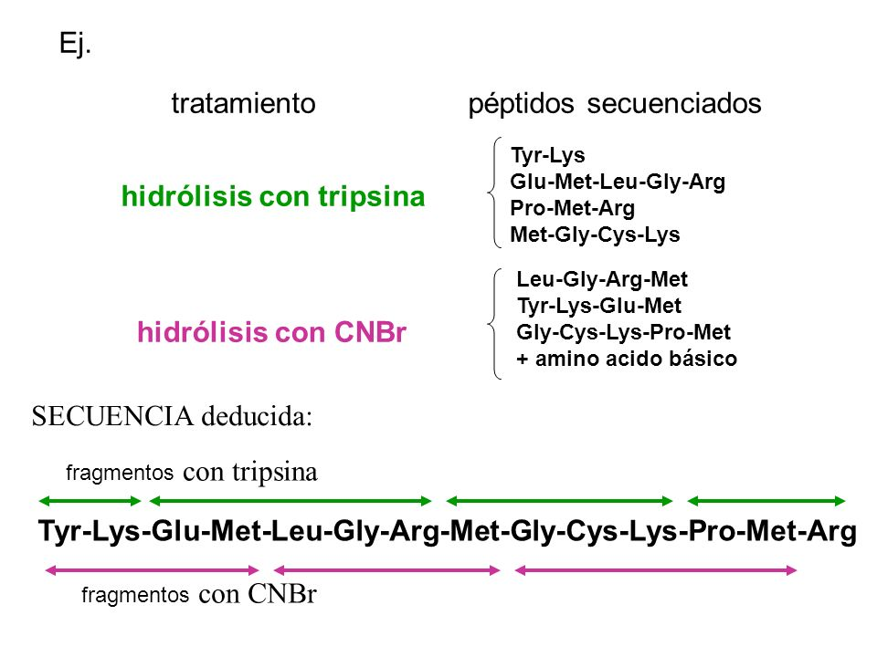 péptidos secuenciados