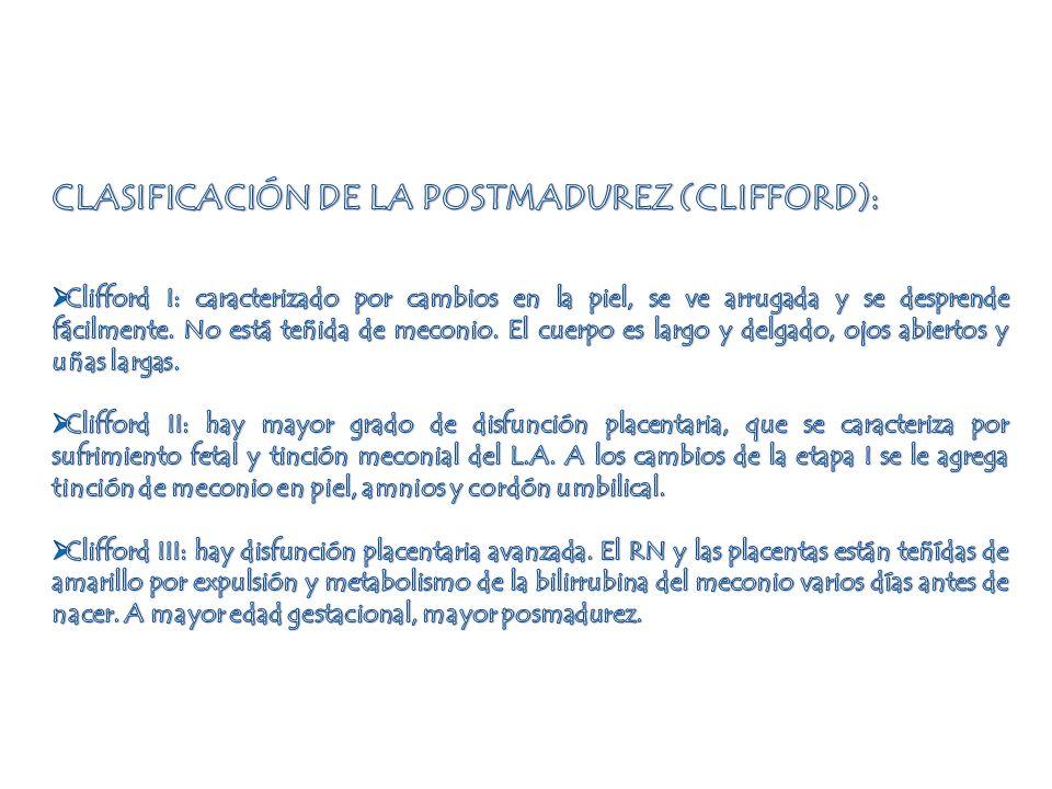 CLASIFICACIÓN DE LA POSTMADUREZ (CLIFFORD):