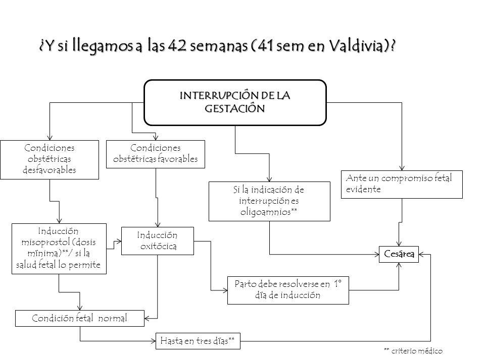 INTERRUPCIÓN DE LA GESTACIÓN