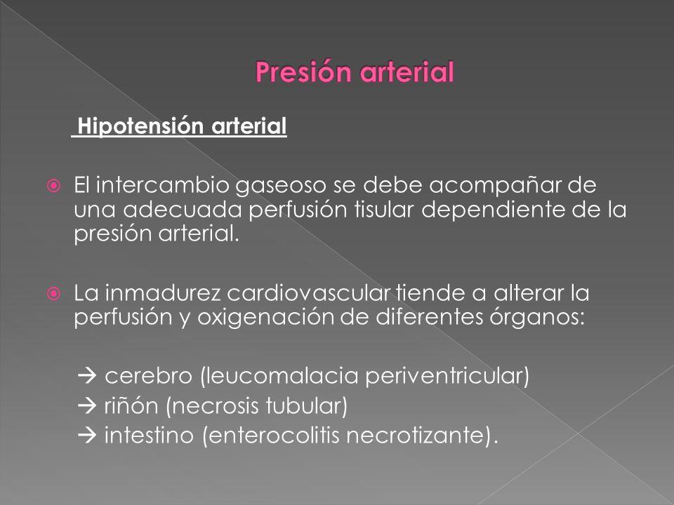 Presión arterial Hipotensión arterial