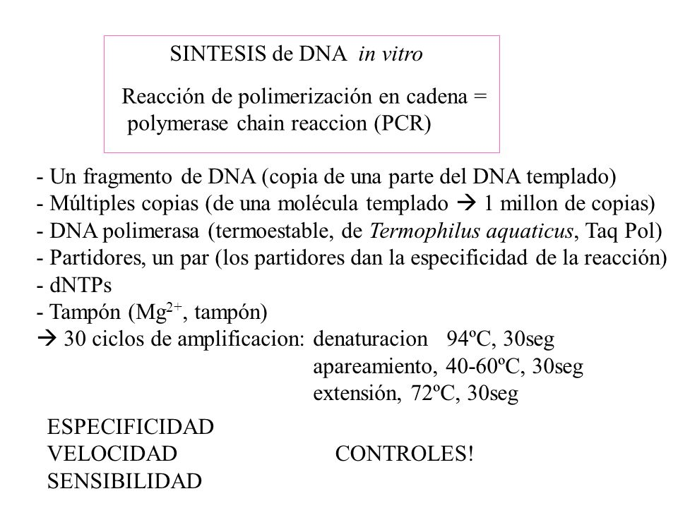 SINTESIS de DNA in vitro