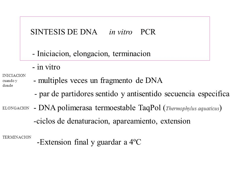 SINTESIS DE DNA in vitro PCR