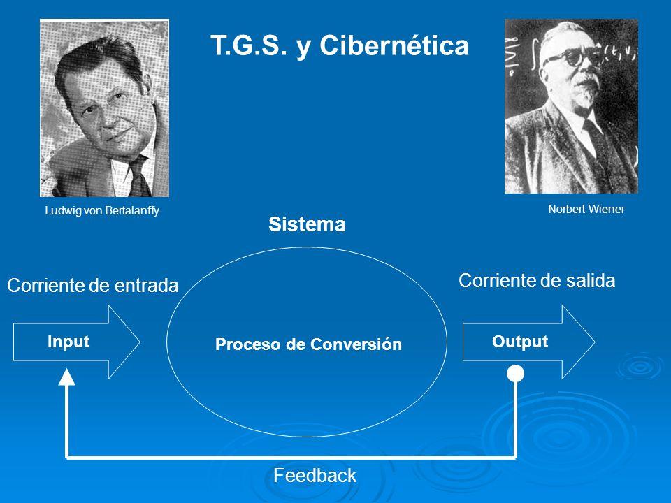 T.G.S. y Cibernética Sistema Corriente de salida Corriente de entrada