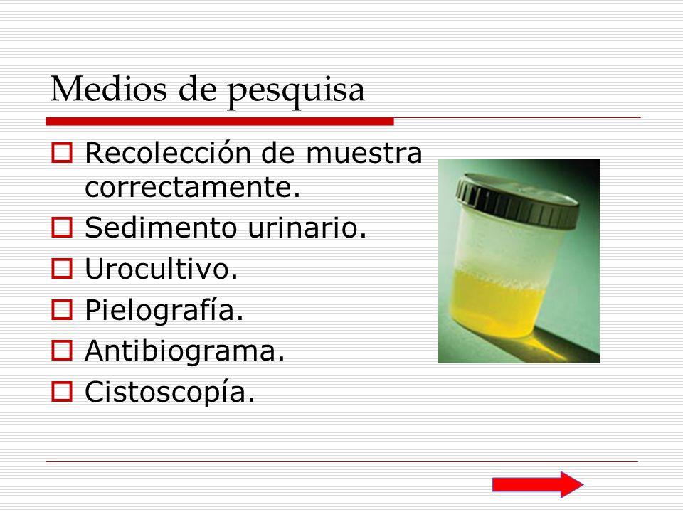 Medios de pesquisa Recolección de muestra correctamente.