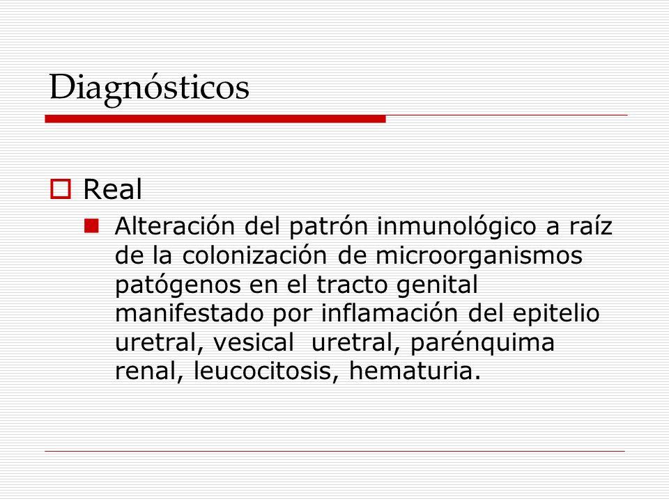 Diagnósticos Real.