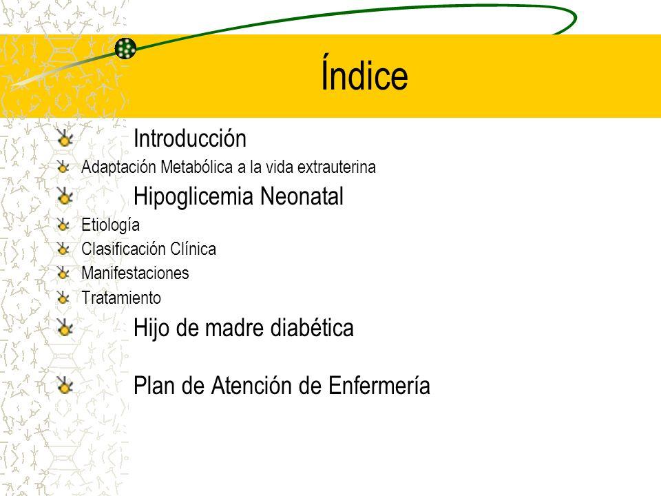 Índice Introducción Hipoglicemia Neonatal Hijo de madre diabética