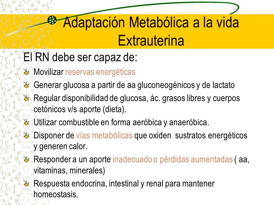 Adaptación Metabólica a la vida Extrauterina