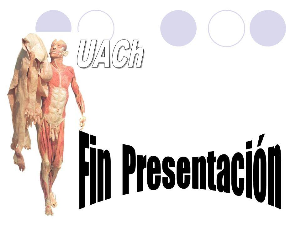 UACh Fin Presentación