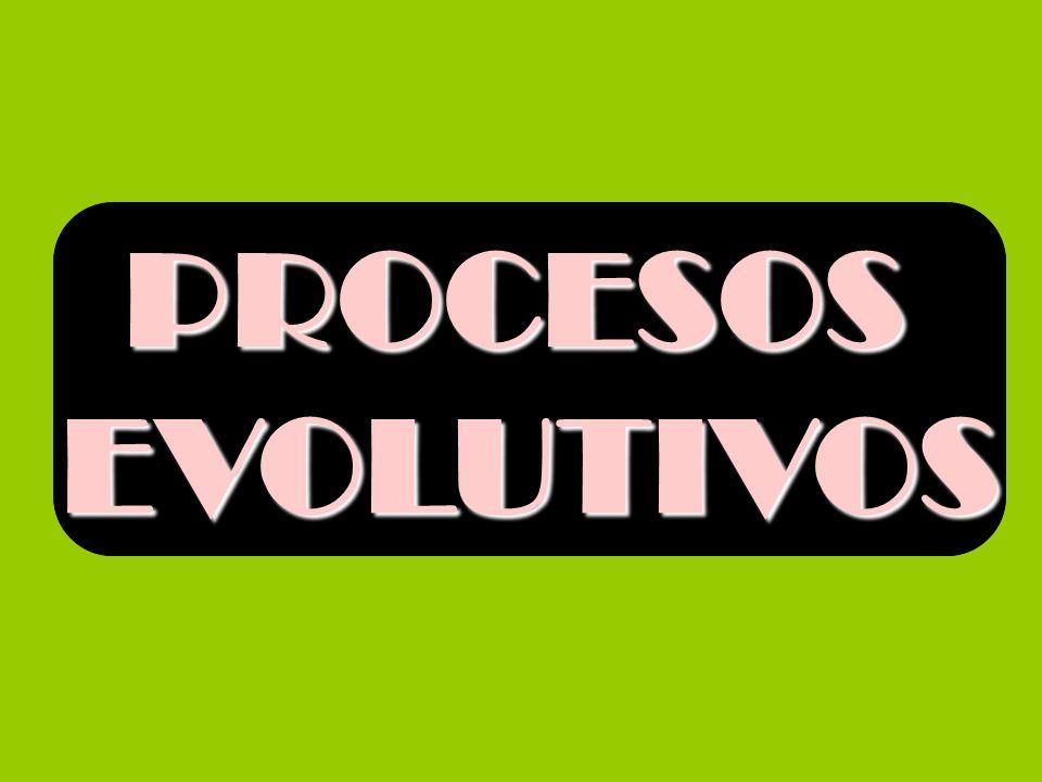 PROCESOS EVOLUTIVOS