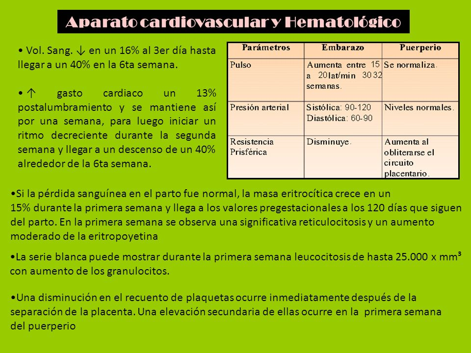 Aparato cardiovascular y Hematológico