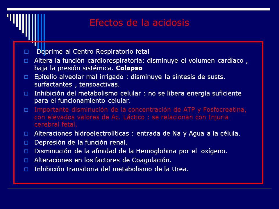 Efectos de la acidosis Deprime al Centro Respiratorio fetal