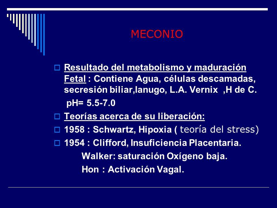 MECONIO Resultado del metabolismo y maduración Fetal : Contiene Agua, células descamadas, secresión biliar,lanugo, L.A. Vernix ,H de C.