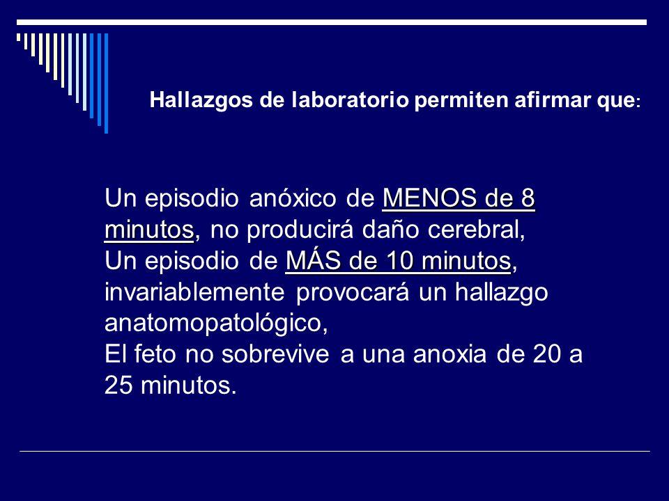 Un episodio anóxico de MENOS de 8 minutos, no producirá daño cerebral,