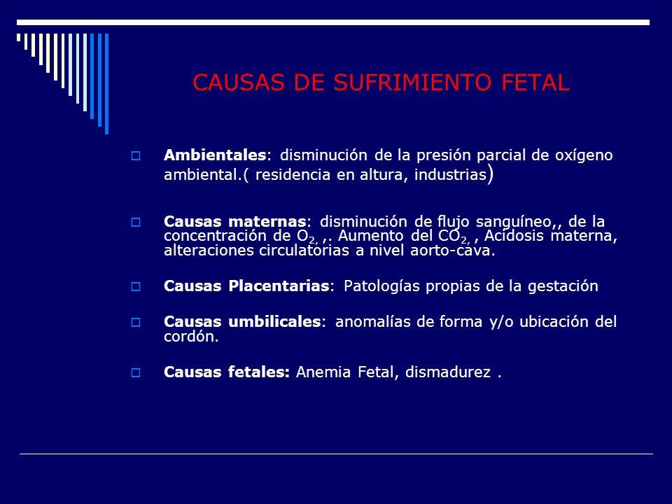 CAUSAS DE SUFRIMIENTO FETAL