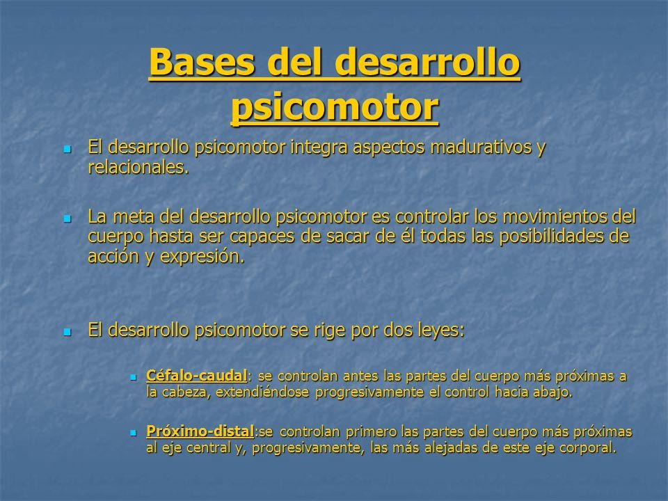 Bases del desarrollo psicomotor