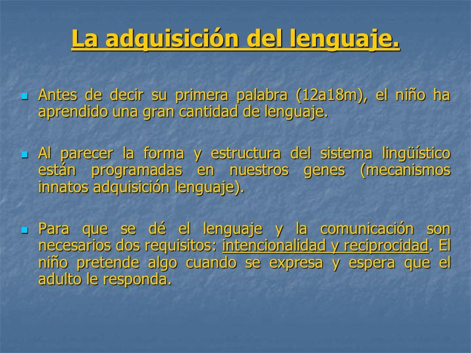 La adquisición del lenguaje.