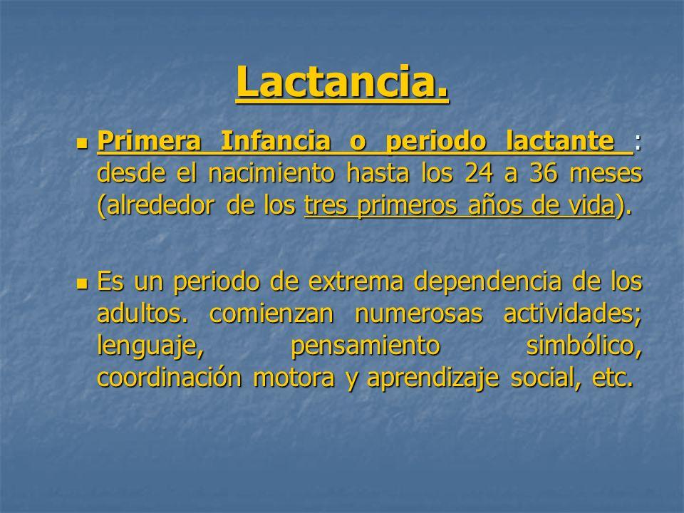 Lactancia.Primera Infancia o periodo lactante : desde el nacimiento hasta los 24 a 36 meses (alrededor de los tres primeros años de vida).