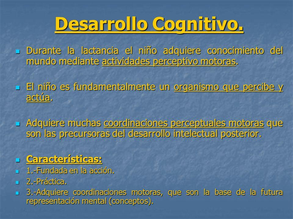 Desarrollo Cognitivo.Durante la lactancia el niño adquiere conocimiento del mundo mediante actividades perceptivo motoras.