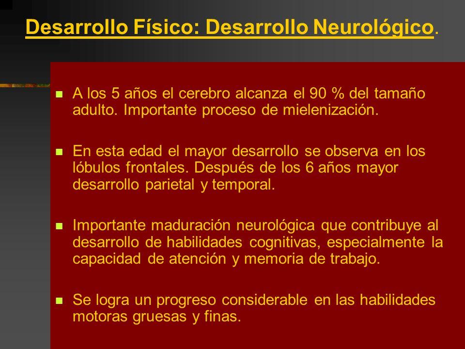 Desarrollo Físico: Desarrollo Neurológico.