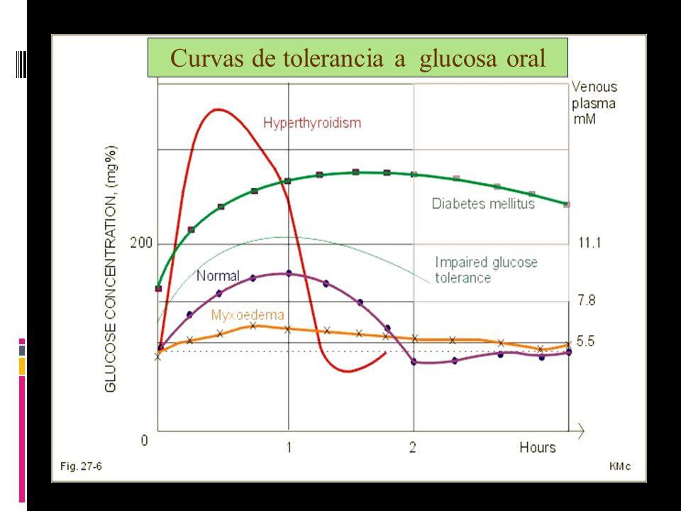 Curvas de tolerancia a glucosa oral