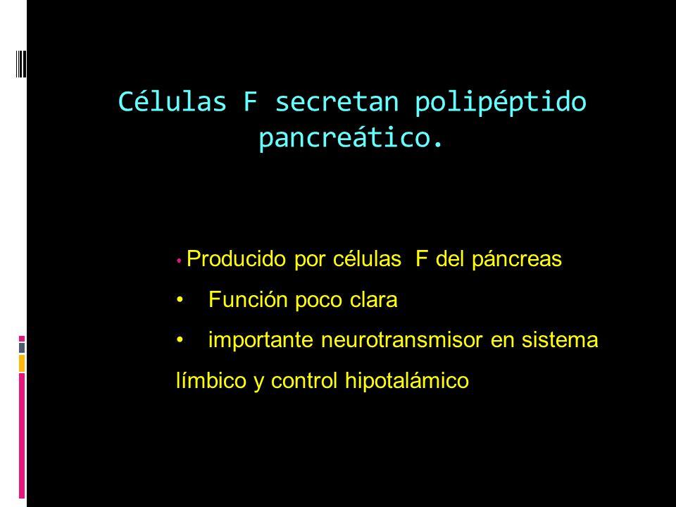 Células F secretan polipéptido pancreático.