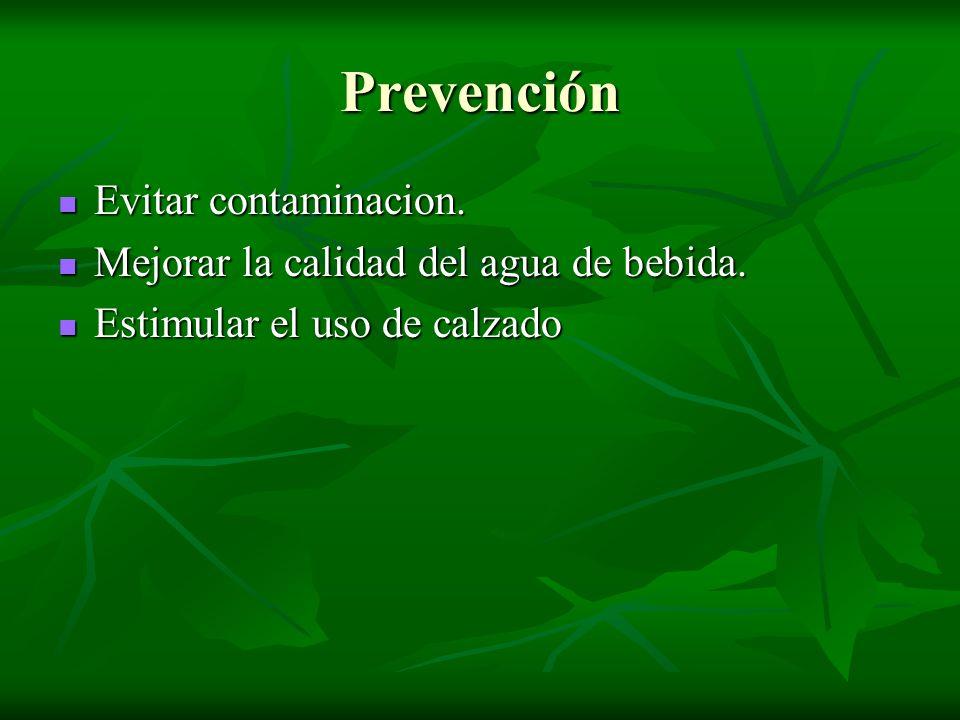 Prevención Evitar contaminacion.