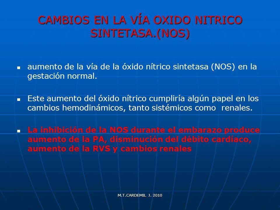 CAMBIOS EN LA VÍA OXIDO NITRICO SINTETASA.(NOS)