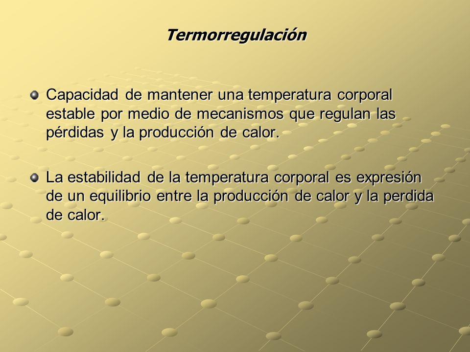 Termorregulación Capacidad de mantener una temperatura corporal estable por medio de mecanismos que regulan las pérdidas y la producción de calor.