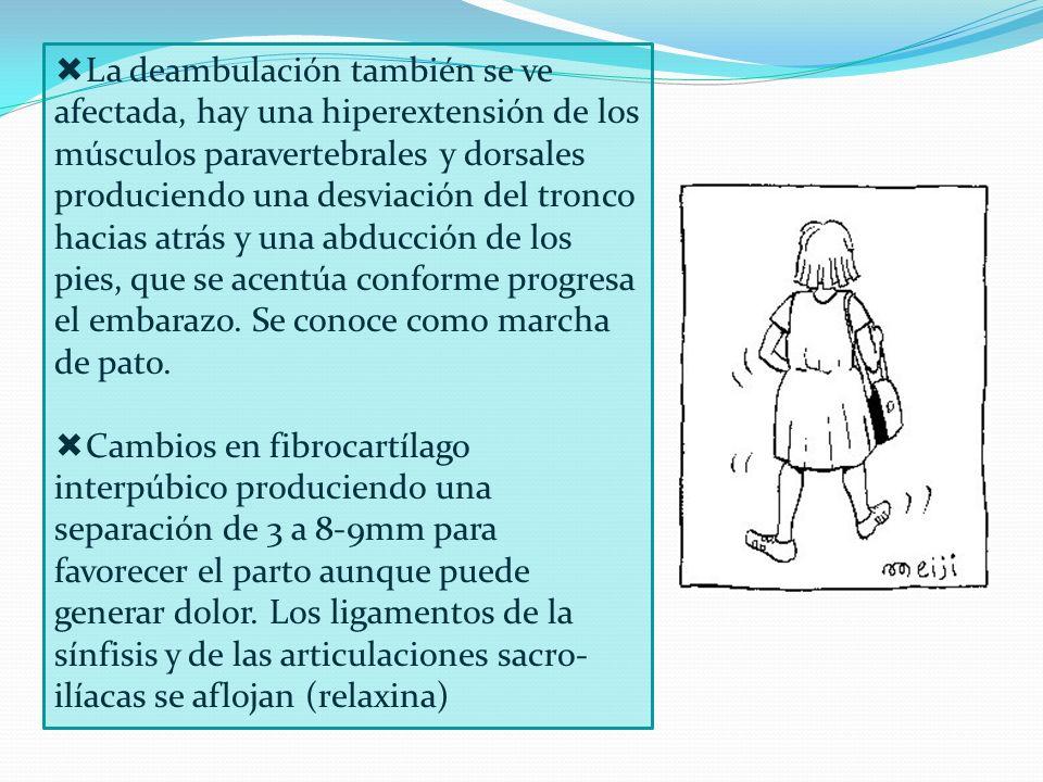 La deambulación también se ve afectada, hay una hiperextensión de los músculos paravertebrales y dorsales produciendo una desviación del tronco hacias atrás y una abducción de los pies, que se acentúa conforme progresa el embarazo. Se conoce como marcha de pato.
