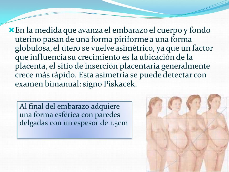 En la medida que avanza el embarazo el cuerpo y fondo uterino pasan de una forma piriforme a una forma globulosa, el útero se vuelve asimétrico, ya que un factor que influencia su crecimiento es la ubicación de la placenta, el sitio de inserción placentaria generalmente crece más rápido. Esta asimetría se puede detectar con examen bimanual: signo Piskacek.