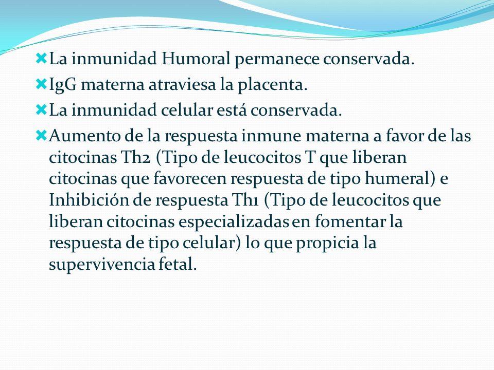 La inmunidad Humoral permanece conservada.