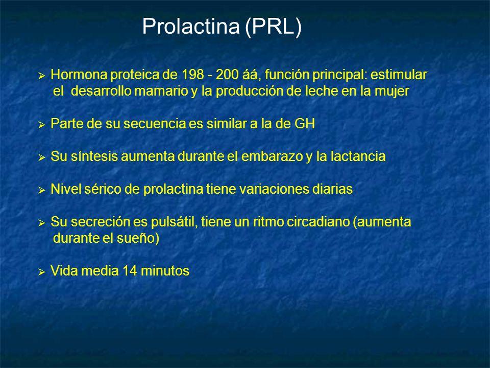 Prolactina (PRL) Hormona proteica de 198 - 200 áá, función principal: estimular. el desarrollo mamario y la producción de leche en la mujer.