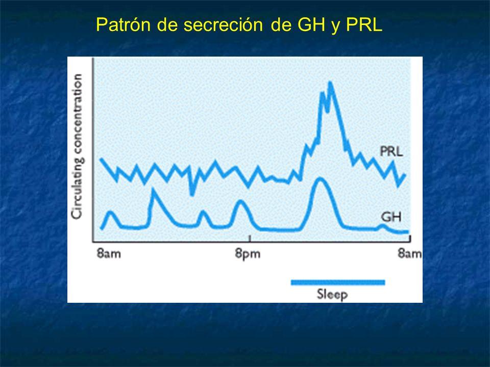 Patrón de secreción de GH y PRL