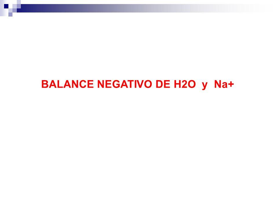 BALANCE NEGATIVO DE H2O y Na+