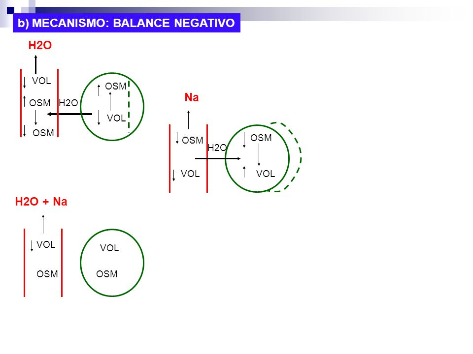 b) MECANISMO: BALANCE NEGATIVO