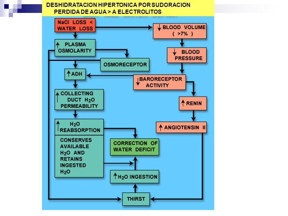 DESHIDRATACION HIPERTONICA POR SUDORACION