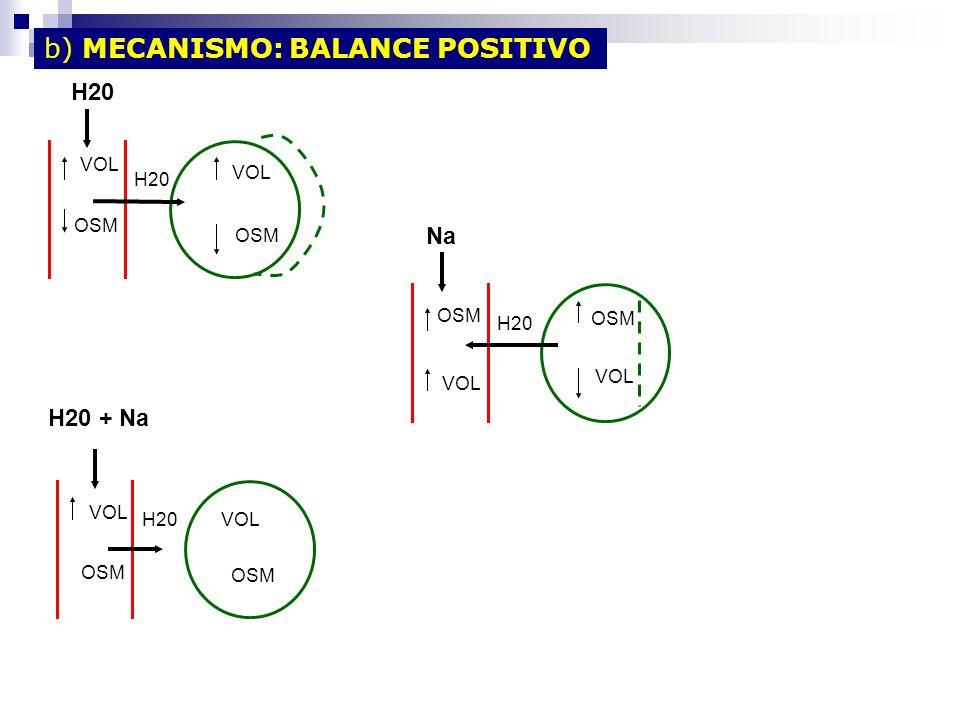 b) MECANISMO: BALANCE POSITIVO
