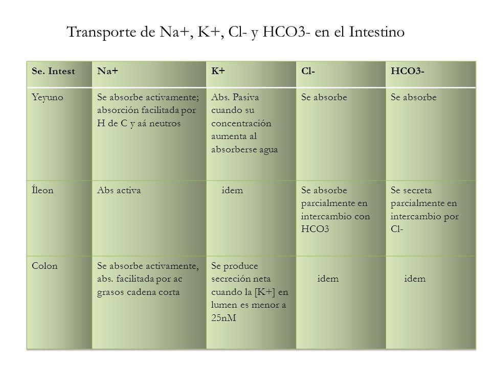 Transporte de Na+, K+, Cl- y HCO3- en el Intestino
