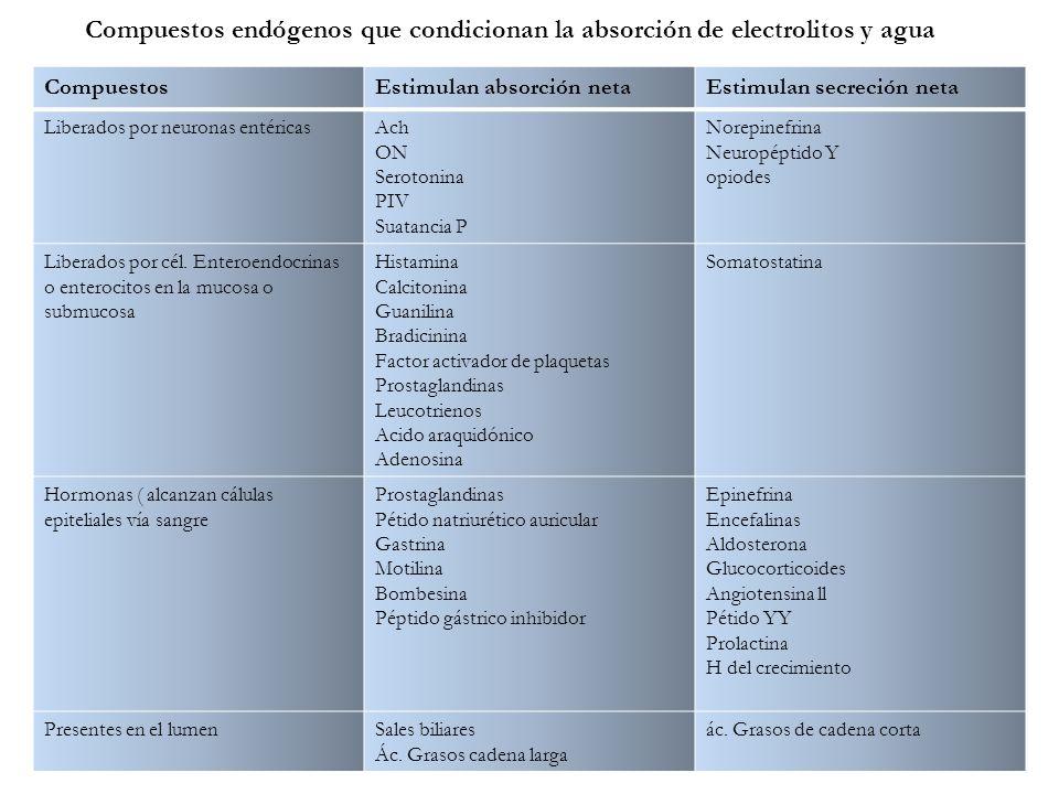 Compuestos endógenos que condicionan la absorción de electrolitos y agua