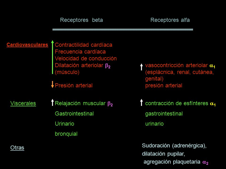 Receptores beta Receptores alfa