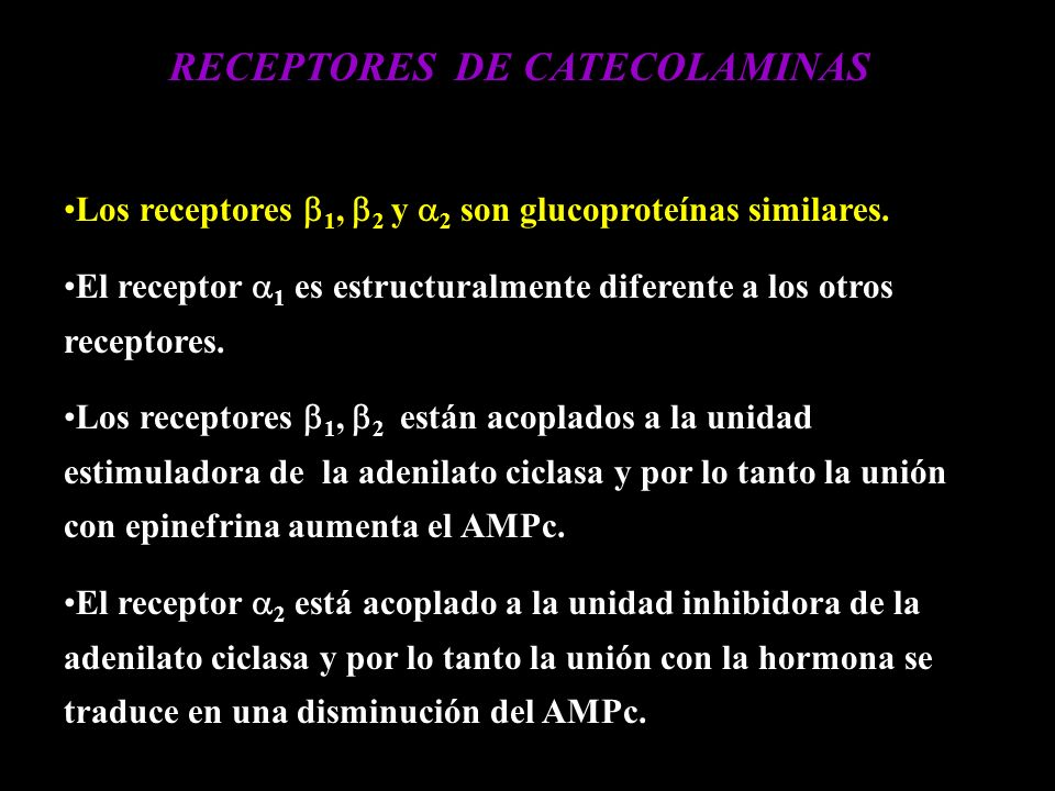 RECEPTORES DE CATECOLAMINAS