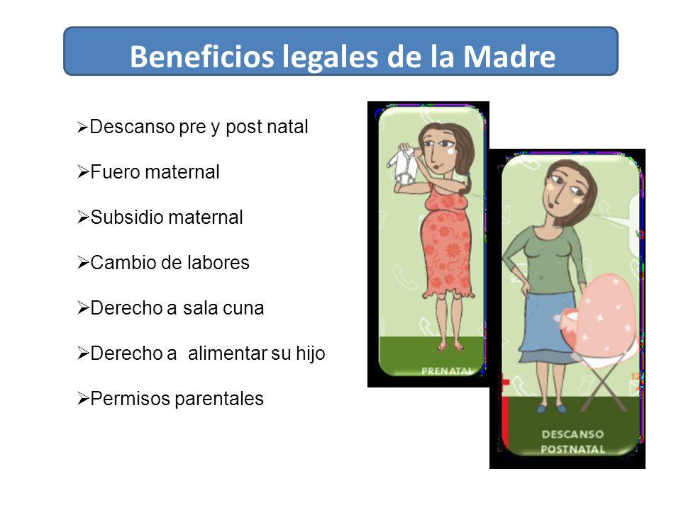 Beneficios legales de la Madre