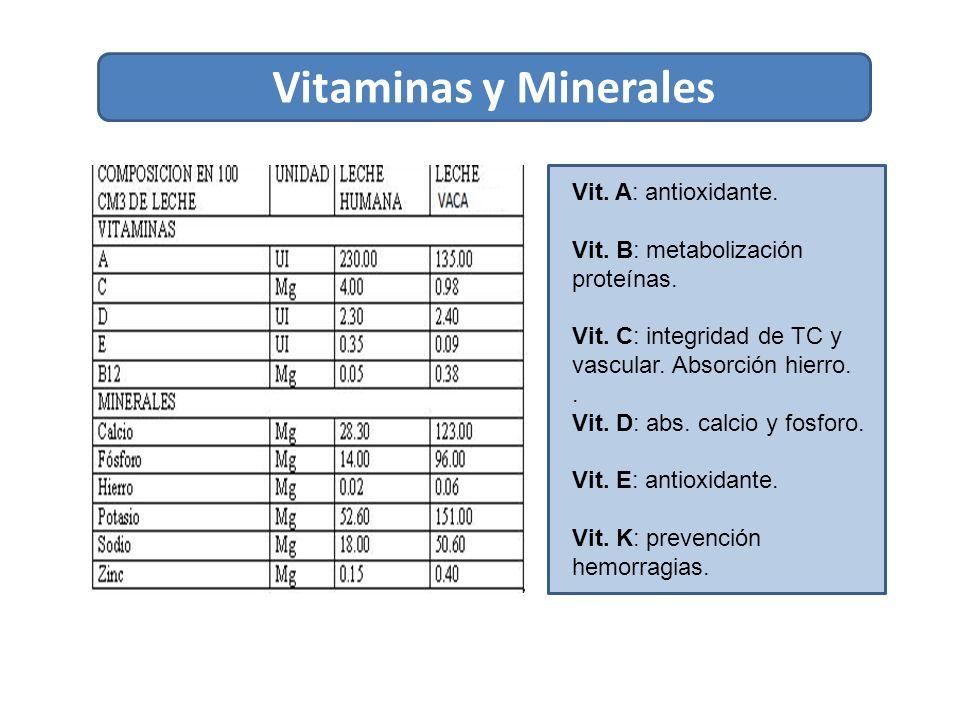 Vitaminas y Minerales Vit. A: antioxidante.